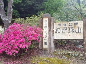 町田ひろ子アカデミー福岡校ブログ「クラスメートと春の遠足」